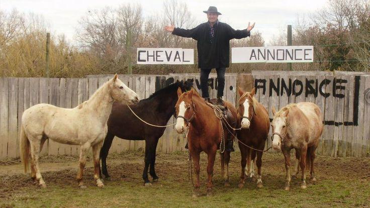 Enormissime photo ! Super prise de vue pour le concours ChevalAnnonce ! #ca #cheval #chevalannonce #concours