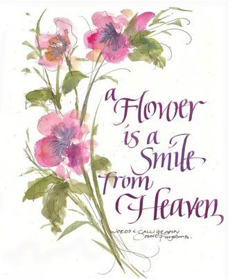 Image result for flower quotes