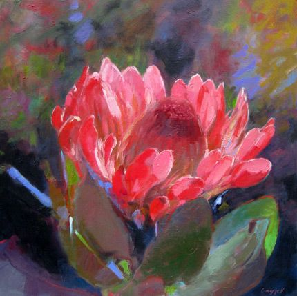LOve this Protea by Cathy Layzell!