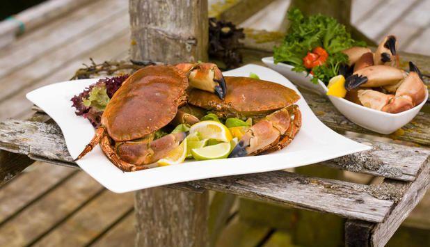 Kokt krabbekjøtt er en av de mest fantastiske sjømatrettene man kan servere. Server krabben med loff, smør, majones og sitron. #fisk #oppskrift
