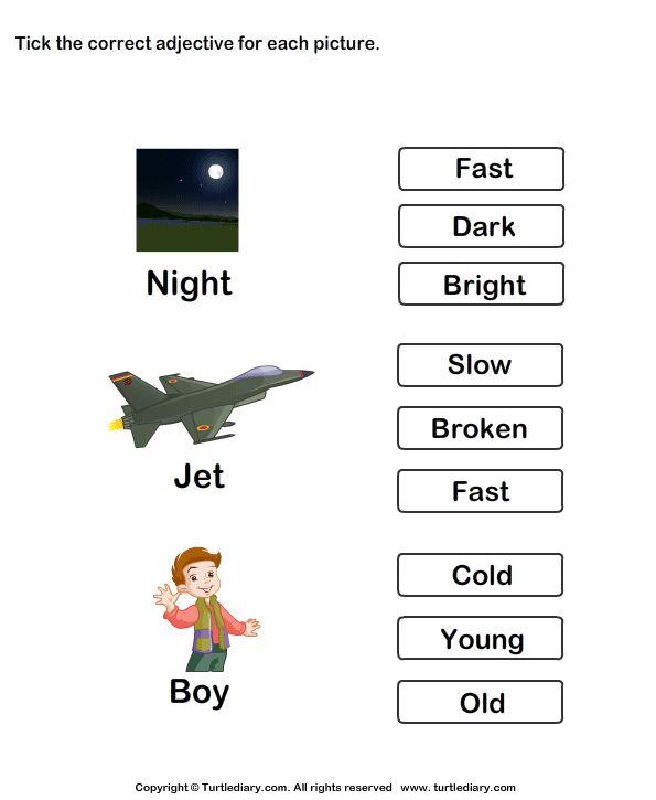 Choose the best adjective - TurtleDiary.com