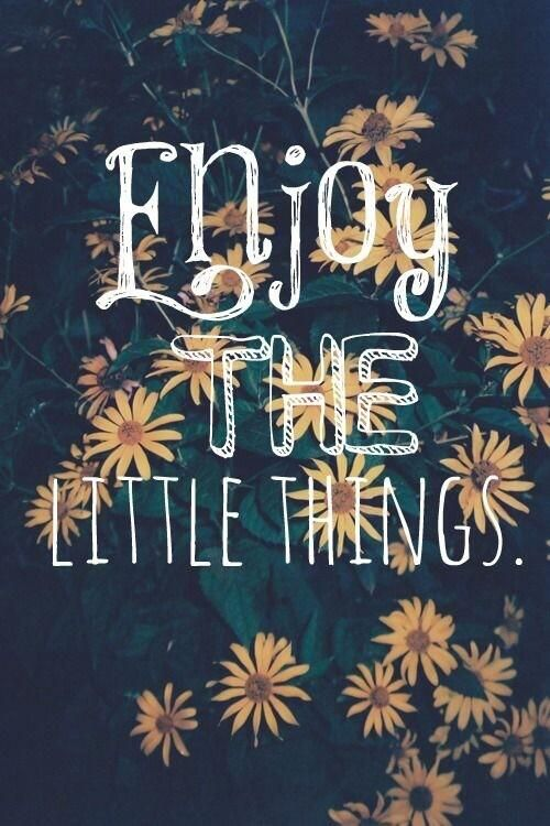 Happiness is in the little things. Acknowledge and enjoy them!