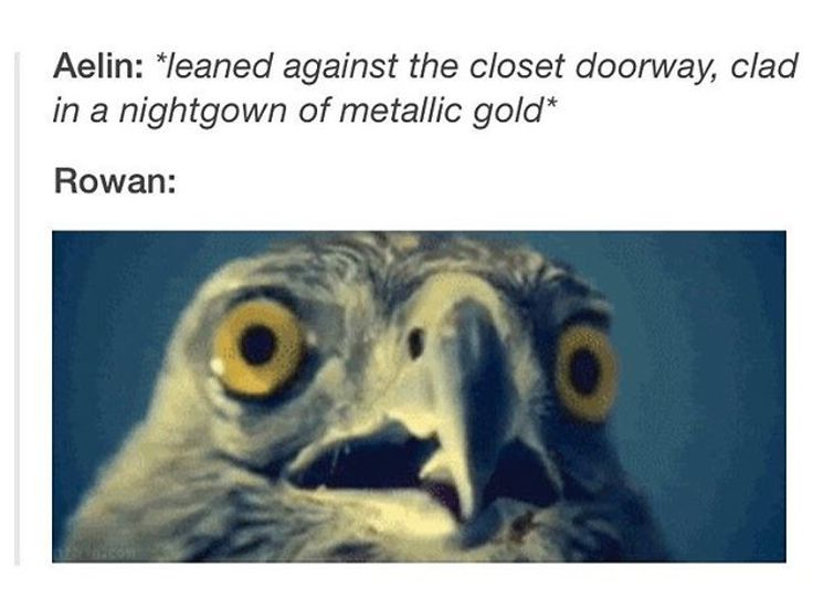 XD my face when I saw this on tumblr @stormsea