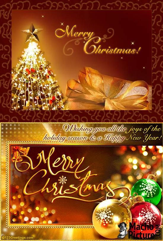 Free email christmas cards - 3 PHOTO!