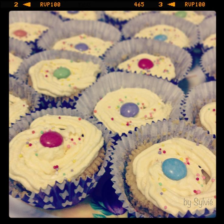 Vintage Cupcake - Sylvié Photo