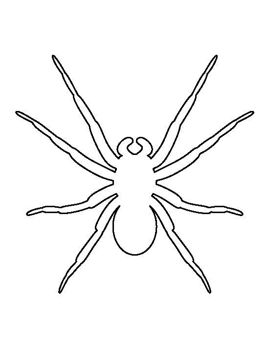 Přes 25 nejlepších nápadů na téma Spider Template na Pinterestu - blank outline template