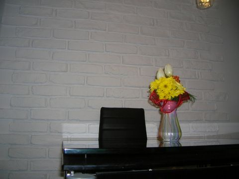 http://allegro.pl/kamien-dekoracyjny-stara-cegla-okazja-hit-cena-i5457817805.html