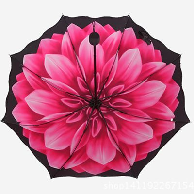 http://www.aliexpress.com/store/product/Sun-umbrella-folding-peony-parapluie-beautiful-lace-umbrellas-women-rain-black-coating-5-colors-paraguas-mujer/1479365_32598253393.html?spm=a2g01.8076901.template-section-container.517.hYB20v