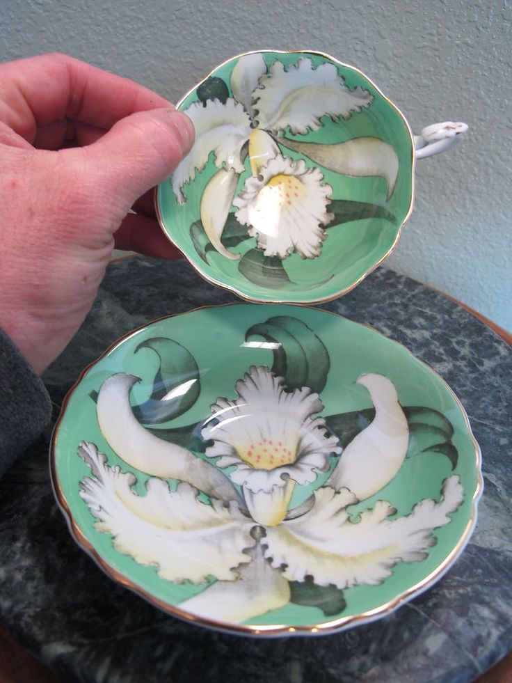 chintz paragon fine bone china england iris or lily flower green background ebay porzellan. Black Bedroom Furniture Sets. Home Design Ideas