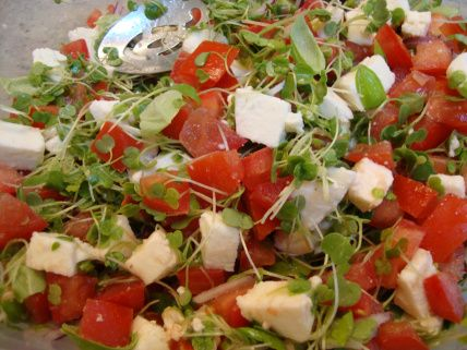 Bruschetta with Micro Arugula and Basil | Somebody's Mom: Home Cooking Recipes and Cookies for our Troops