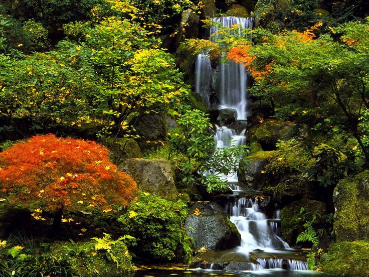What is Takiyu? A breath taking Japanese waterfall in your own home