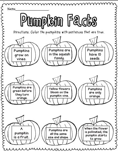 Sarah's First Grade Snippets: Pumpkin Facts