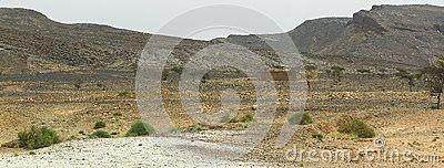 Desert of stones and gravel - Sahara - Best of Morocco