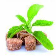 Cukry dokáží vyrábět jenom rostliny, zatímco živočichové je musí získávat z potravy. Ale existuje v rostlinné říši sladidlo, jež bychom mohli používat s čistým svědomím? Na celé zeměkouli lidé spot…