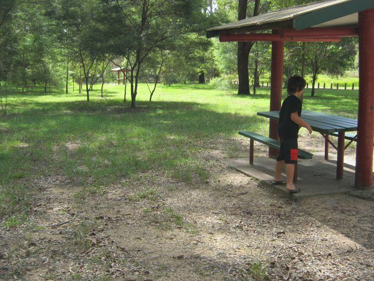 Mt Barney picnic area