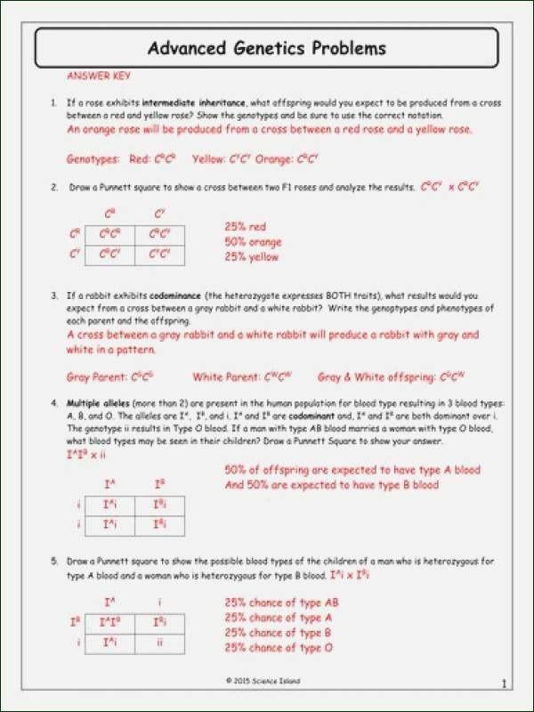 Pin On Printable Worksheet Ideas