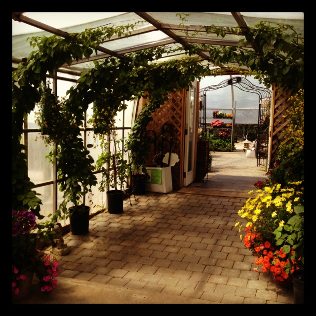 Aspen Crossing greenhouse