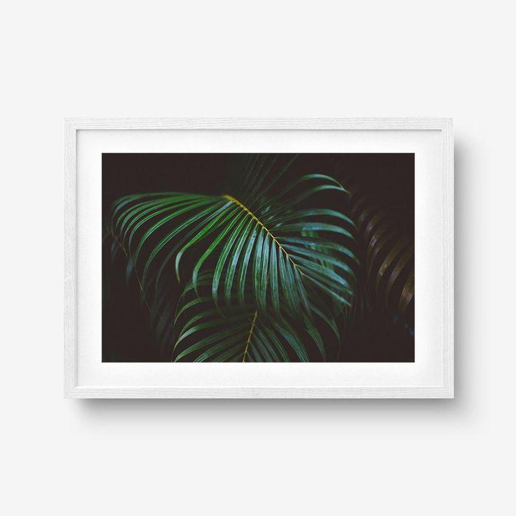 Dark Palm Fronds Poster
