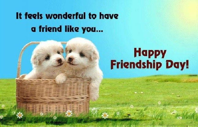 Happy Friendship Day 2017 Images & Pictures
