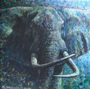 """Big Haaktand"",  Acrylic on Canvas,   W: 150mm x H: 150mm x D: 10mm,  W: 6"" x H: 6"" #Art #Painting #Acrylic #Fine_Arts #Contemporary #Benjamin_Mitchley #Wildlife #Animal #Female #South_Africa"