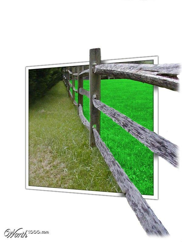(2014-01) Græsset er ikke altid grønnere på den anden side