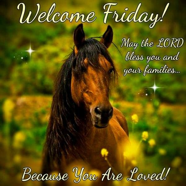 Welcome Friday. May The Lord Bless You And Your Family