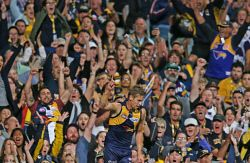 SUN-1401344 © WestPix AFL Round 6 - West Coast Eagles v Fremantle Dockers at Subiaco Oval, Perth. Pictured - Eagle Mark LeCras celebrates a goal in the third term   Picture: Daniel Wilkins