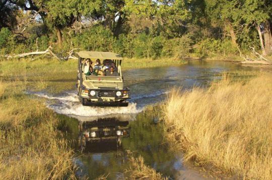 Game Drive at Pom Pom Camp (Okavango Delta, Botswana)