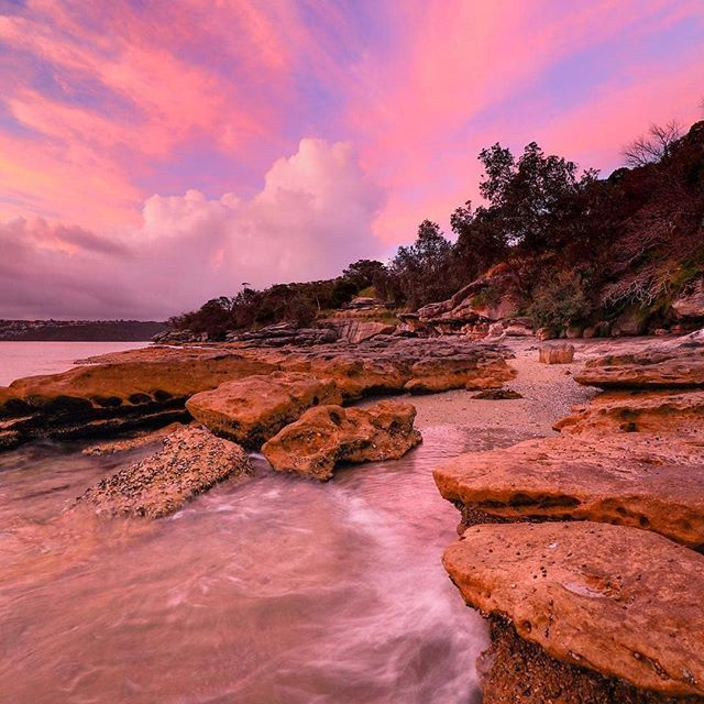 Take a walk along the Hermitage Foreshore Track in Watsons Bay around sunset and see if you're lucky enough to witness a fairy floss sky like this  One of Sydney's great coastal walks, this easy track offers views of Shark Island, the Sydney Harbour Bridge and the grounds of Strickland House