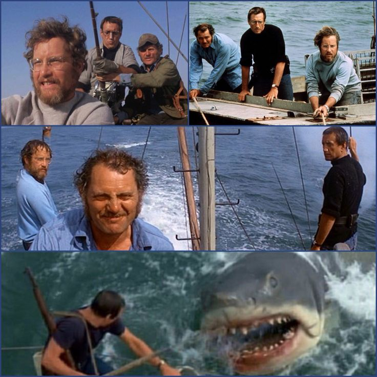 40 years...wow  |  Martin Brody/Roy Scheider, Matt Hooper/Richard Dreyfuss & Quint/Robert Shaw - 'Jaws' (release date 6/20/75)