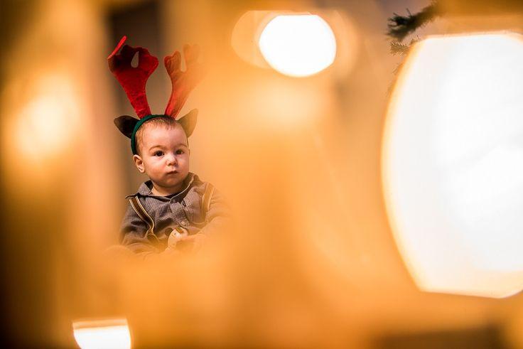 Christmas session. #family #photosession #dastudio #dastudioweddings