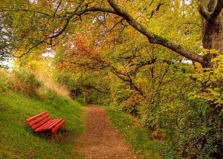 la panchina rossa di Renon Ritten