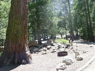 Buckhorn Campground La Canada National Forest State