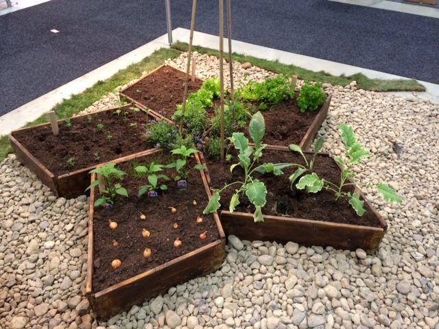 Pallekarmene plantet til.