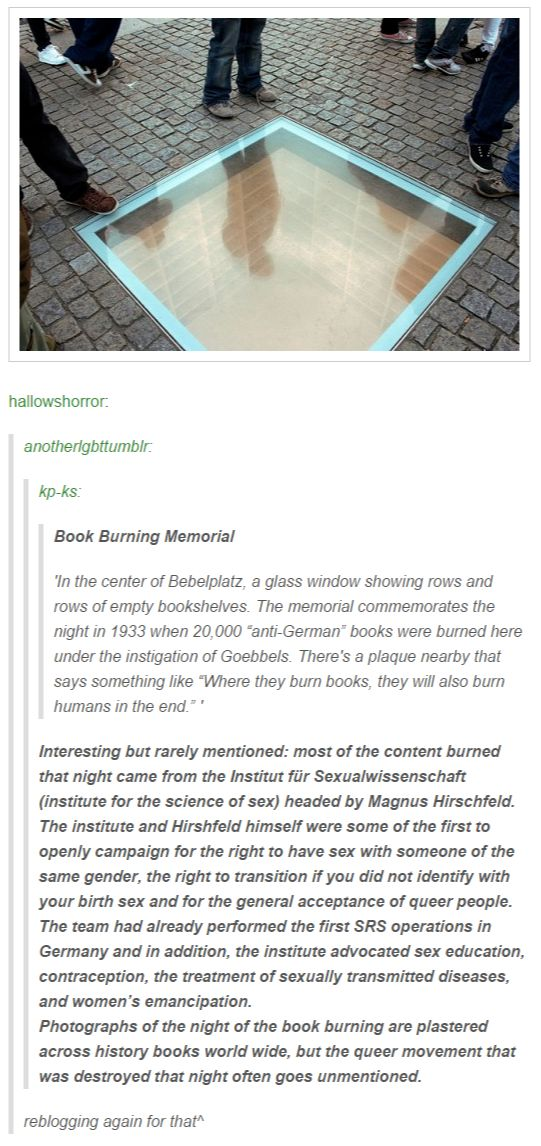 Book Burning Memorial--see text for interrogation info re queer & trans movement. NOT FACT CHECKED.