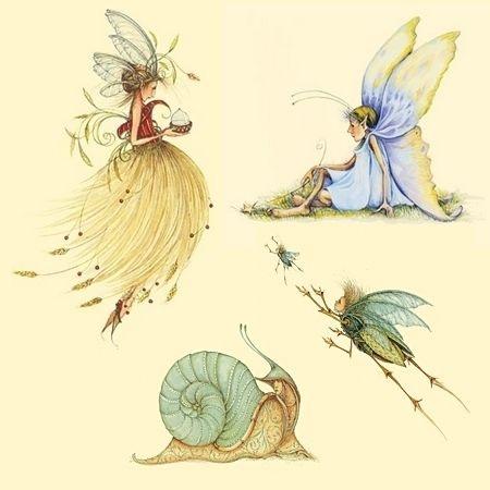 Patience Brewster illustrations <3