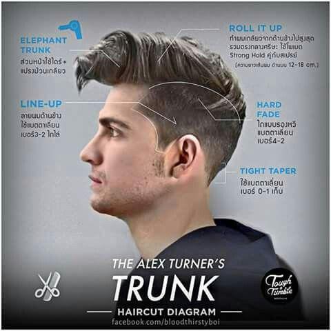 undercut haircut diagram 17 best images about haircut typology on pinterest disconnected undercut diagram