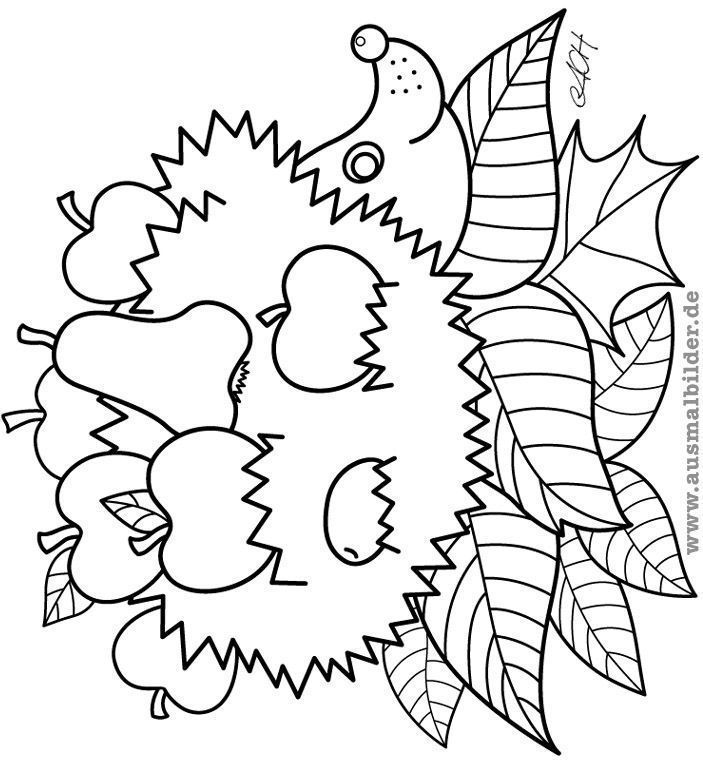 Autumn Hedgehog Coloring Pages Coloring Pages For Children Coloring Pages F Coloring Pages For Kids Fall Coloring Pages Kindergarten Coloring Pages