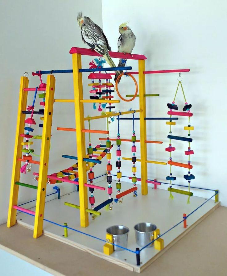 playground calopsitas/periquitos/agapornis encanto das aves!