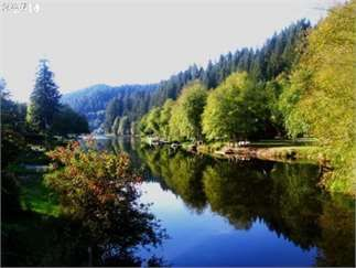Birkenfeld, Columbia County, Northwest, OR Land For Sale - .25 Acres