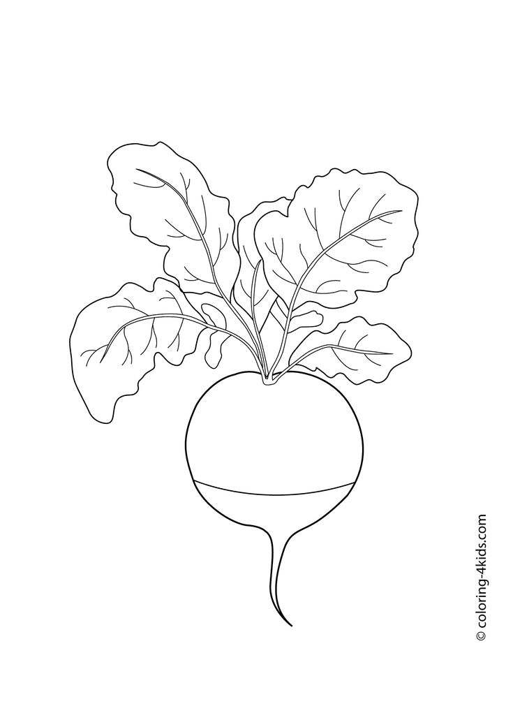 Radish vegetables coloring pages for kids, printable free