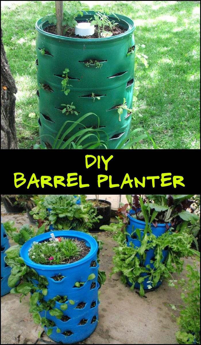 Diy Garden Projects 884 Best Diy Projects For Everyone Images On Pinterest