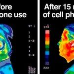 If You Own Some Of These Phones You Should Throw It Immediately! List Of Phones That Radiate The Most And Can Seriously Endanger Your Health!