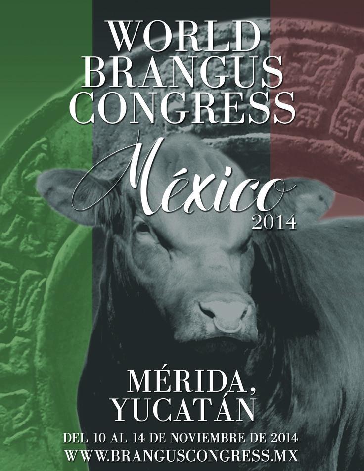 Congreso Mundial #Brangus #Merida #Yucatan #EmocionesDeTiempoCompleto