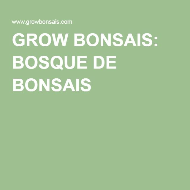 GROW BONSAIS: BOSQUE DE BONSAIS