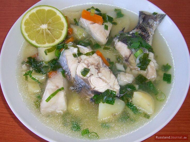 """In der russischen Küche gibt es zahlreiche Fischgerichte. Eines dieser Fischgerichte heißt """"Ucha"""" und wird auch als die russische Fischsuppe bezeichnet."""