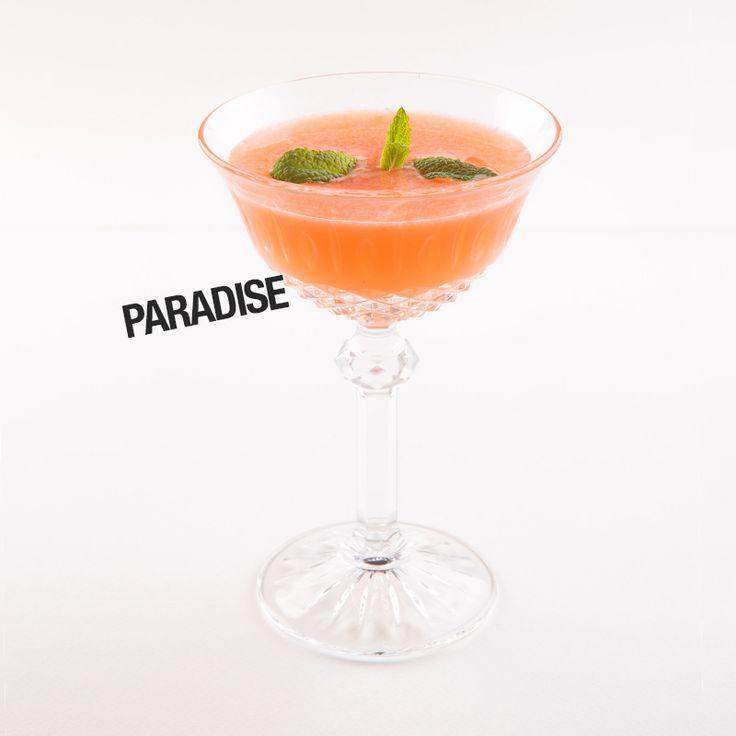 Κοκτέιλ PARADISE Φρούτα No 2 Λευκή τεκίλα Σιρόπι αγαύης Χυμός λάιμ