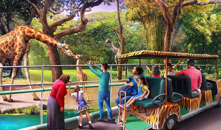 Gardens of Time / Mysore Zoo Giraffes Ch 277