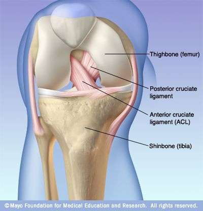 VI. Knee Joint ID List ACL/PCL PCL Injury: Posterior cruciate ligament injury happens far less often than does injury to the knee's better known counterpart, the anterior cruciate ligament (ACL).