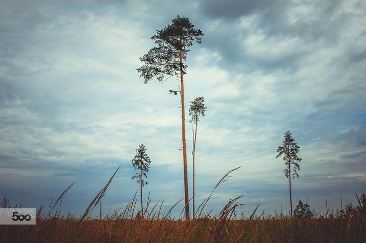 Чем дальше от города, тем красивее пейзаж)